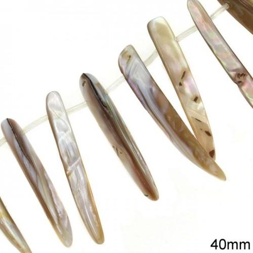 Κοχύλι δόντι 40mm με 1 τρύπα τιμή ανα χάντρα